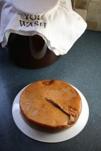 Kombucha, a piece of cake!